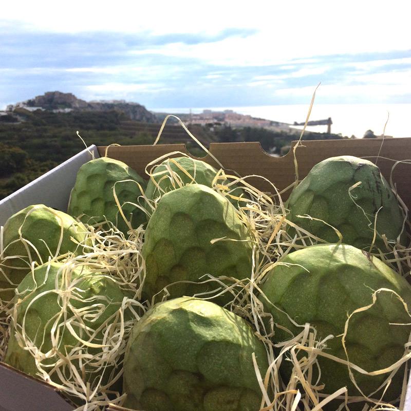 caja de chirimoyas en el monte de los almendros en salobreña