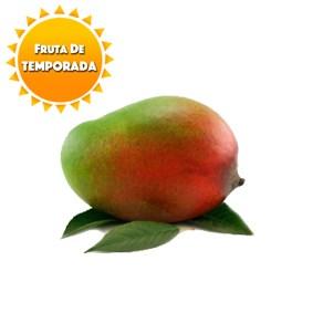 mango tommy atkins costa tropical granada málaga temporada