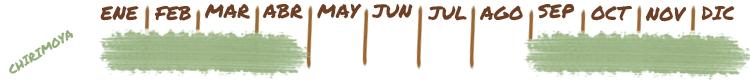 Calendario y temporada de cultivo de chirimoya en la Costa Tropical de Granada