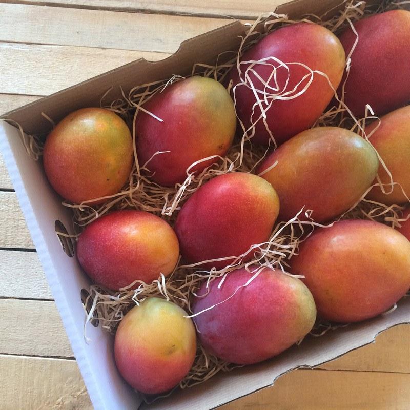 caja de mangos irwin madurados en el arbol