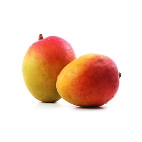 mango kent de la Costa Tropical de Granada