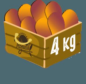 caja de mangos 4 kilos