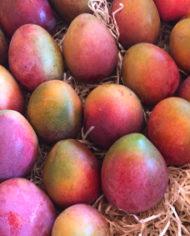caja de mangos bombon