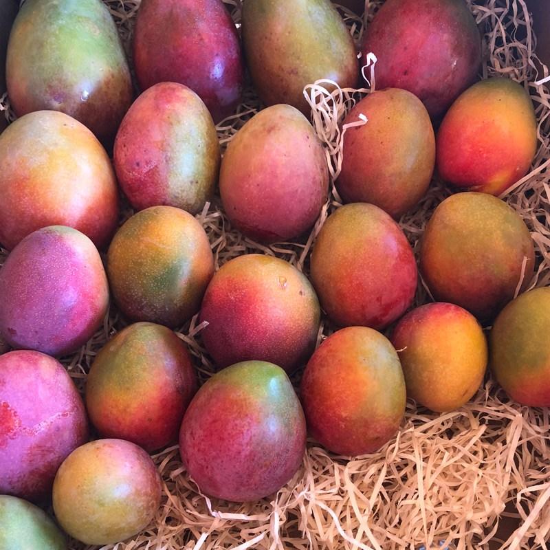 caja de mangos bombón