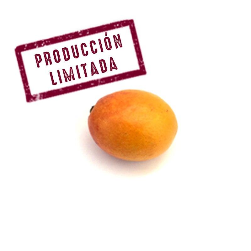 mango bombon aborto mango irwin costa tropical