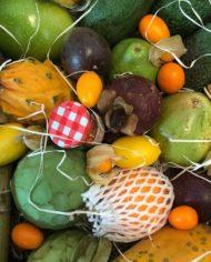 comprar-surtido-de-frutas-tropicales-almunecar