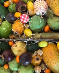 comprar-surtido-de-frutas-tropicales-granada