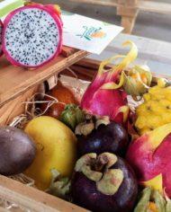 comprar-surtido-de-frutas-tropicales-motril