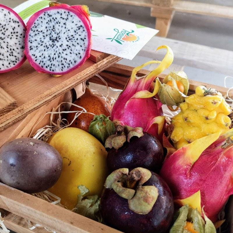 comprar surtido de frutas tropicales Motril
