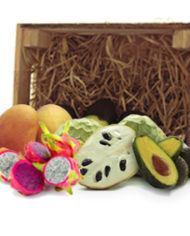comprar surtido tropical mango pitahaya aguacate chirimoya