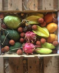 comprar surtido tropical mango pitahaya aguacate chirimoya carambola