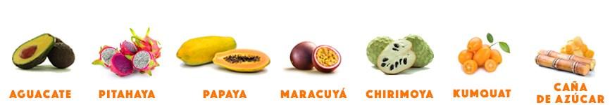Mix de frutas tropicales en surtido con papaya, kumquat, aguacates, pitahaya o fruta del dragón, chirimoya, maracuyá o fruta de la pasión, caña de azúcar