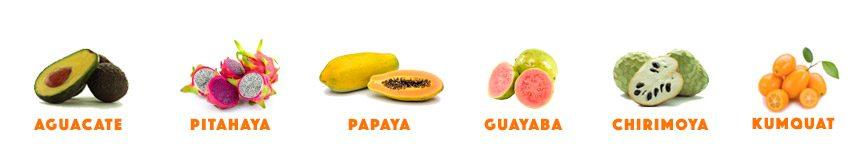 surtido tropical papaya kumquat aguacates pitahaya chirimoya