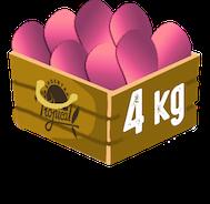 cantidad cuatro kilos de pitahaya o fruta del dragon