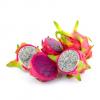 Comprar pitahaya o fruta del dragon
