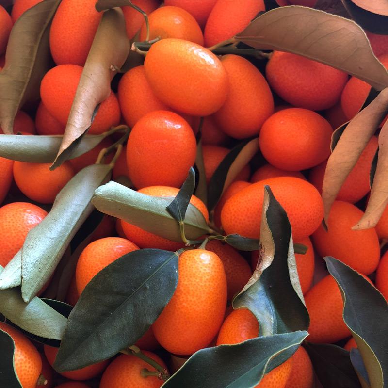 caja de kumquats o naranjas chinas