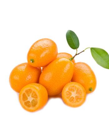kumquat huertatropical dekum