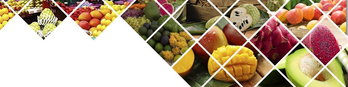 Venta de Fruta Tropical para hostelería, restaurantes, fruterías, empresas de catering y profesionales de la alimentación