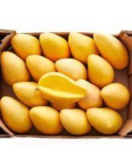 caja-de-mango-ataulfo