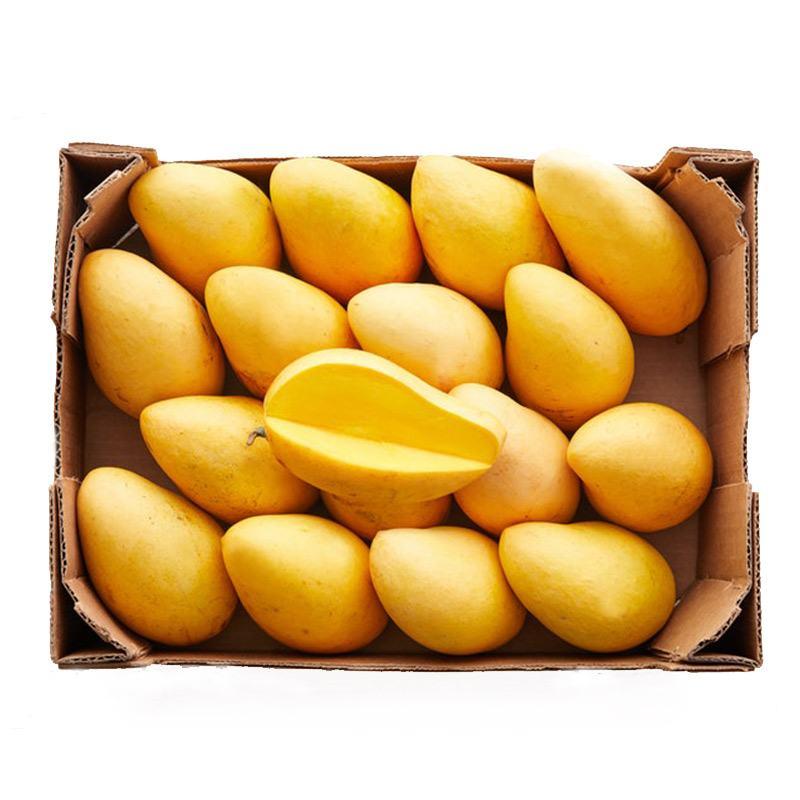 comprar caja de mangos ataulfo
