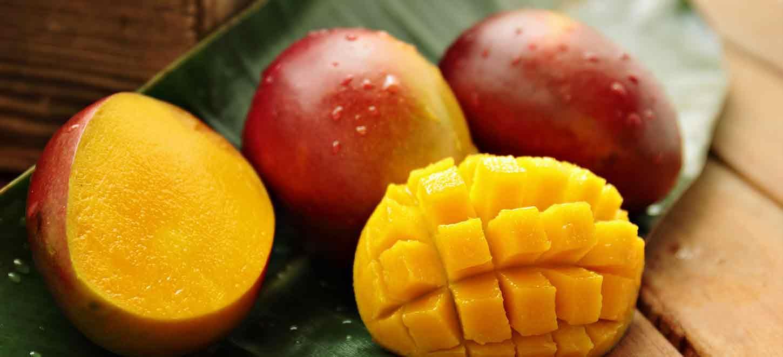 comprar mango bombón