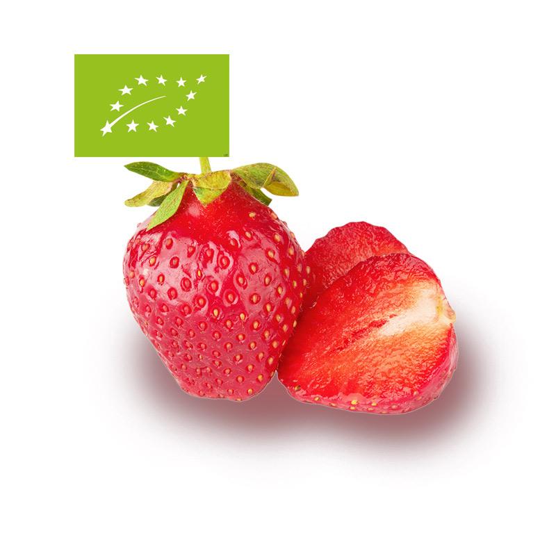 comprear fresas bio de temporada ecológicas a dmicilio