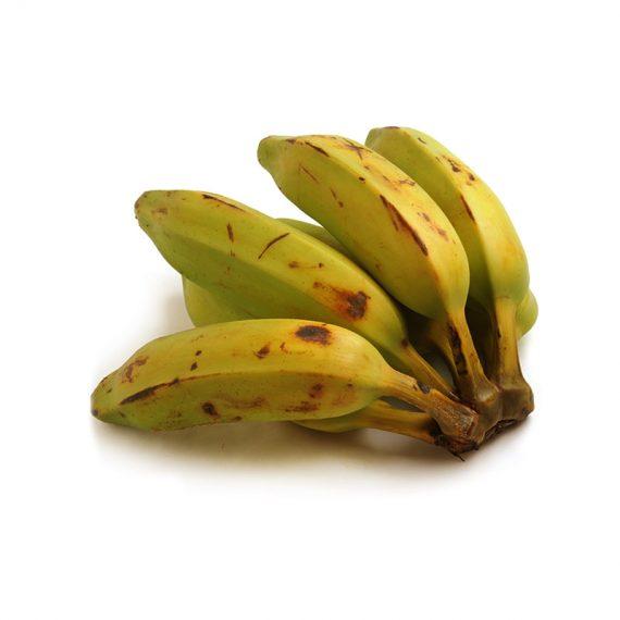 comprar plátano orinoco, cuadrado, burro